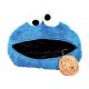 Sesame Street Cushion.
