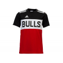 Camiseta Winter Hoops Chicago Bulls.