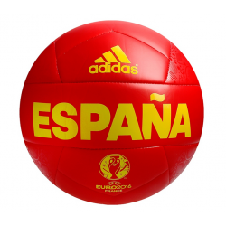 Spain Selection Football 2016.