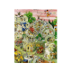 Pisa in Motion 1000 pieces puzzle.