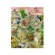 Puzzle de 1000 pièces Pisa in Motion.