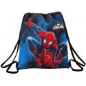 Spider-man Gym bag.