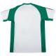 Camiseta de entrenamiento adulto Real Betis 2016-17.
