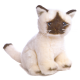 Peluche pequeño de Gato.