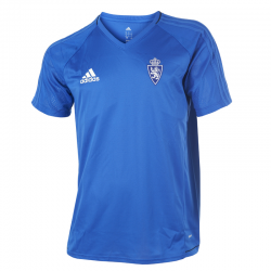 Real Zaragoza Training Shirt 2017-18.